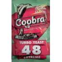 Raugs stiprajiem dzērieniem Coobra 48