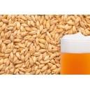 "Ячменный солод ""BEST MALZ - Pale Ale"", 1 кг"