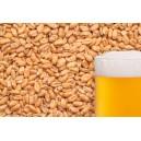 """Пшеничный солод """"BEST MALZ Wheat"""" 25 кг"""